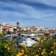 Seaport city of Stintino, Sardinia Island. — Stock Photo