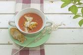 Spanish gazpacho and croutons — Stock Photo