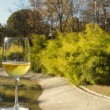 Glass of wine, landscape background — Stok Fotoğraf #37406251