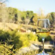 Glass of wine, landscape background — Stok Fotoğraf #37406467