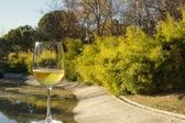 Glass of wine, landscape background — Stock Photo