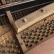 Inside piano — Stock Photo