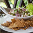 Plate of Ceviche - Stock Photo