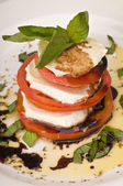 Mozzarella Caprese Salad — Stock Photo