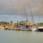 ������, ������: View of Crandon Park Marina in Key Biscayne Island in Miami