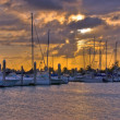 Crandon Park Marinin Key Biscayne Island in Miami, Florida — Stock Photo #22538365