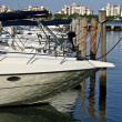 Yatchs at the Marina — Stock Photo