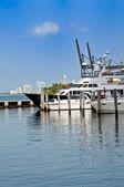 Marina — Stock fotografie
