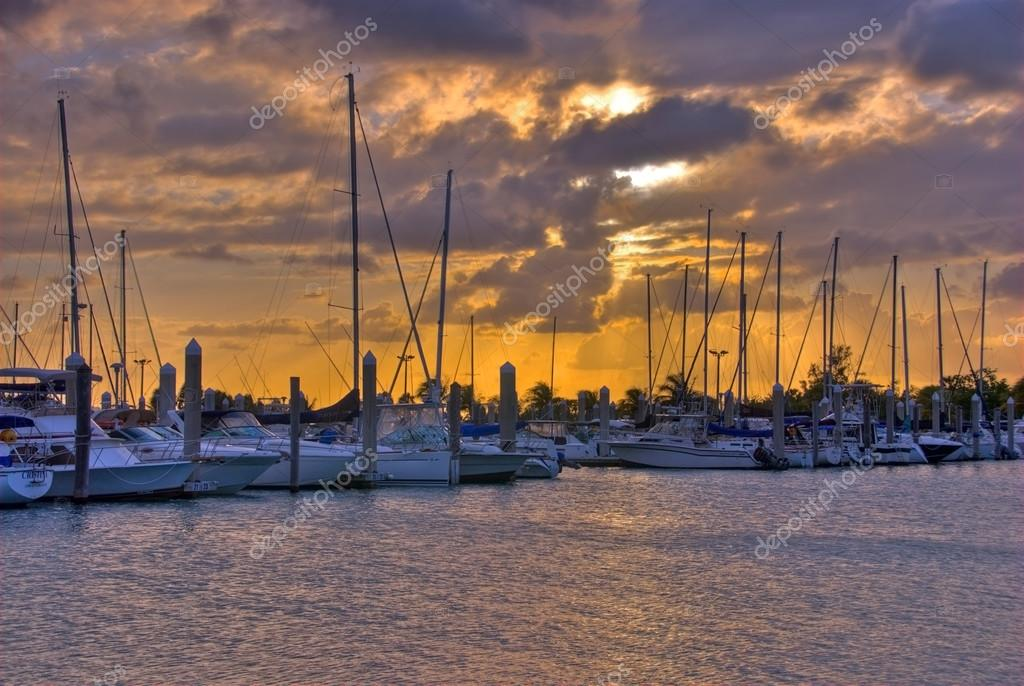 marina de Crandon park en Isla clave biscayne en miami, florida ...
