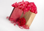 Sacchetti regalo isolata — Foto Stock