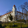 Bratislava Castle and Park - Stock Photo