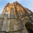 The Cathedral of St. Peter and Paul in Brno. — Stock Photo #23932047