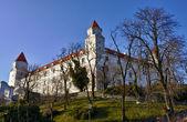 Bratislava Castle and Park — Stock Photo