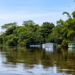 Frio River in Costa Rica — Stock Photo