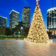 Miami Christmas Tree — Stock Photo