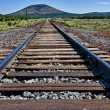 Railway perspective — Stock Photo