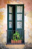Antikes Fenster in colonia — Stockfoto