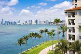 Miami Tropical Paradise — Stock Photo