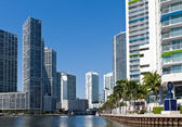 Miami River Condos — Stock Photo