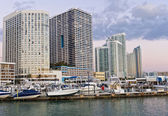 Miami Downtown and Marina — Stock Photo