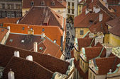 Rode daken van praag — Stockfoto