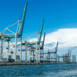 Cranes of the Miami Seaport — Stock Photo