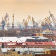 St. Petersburg cranes — Stock Photo