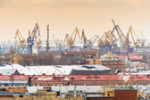 St. Petersburg cranes — Stock Photo