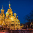 Church of the Savior on Blood at night — Stock Photo