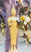 Estátuas de Buda — Fotografia Stock