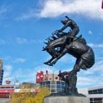 Calgary Stampede — Stock Photo #23142614