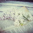The lilac lies on the old vintage book — Stock Photo