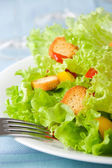 Salad closeup — Stock Photo