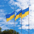 Ukrainiflags — Stock Photo #28823401