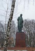 舍甫琴柯在基辅,乌克兰的苏联纪念碑 — 图库照片