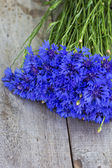 Bouquet of cornflowers — Stock Photo