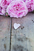 Pink rose heart — Stock Photo