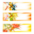 Set of three colored abstract banners — Stock Vector