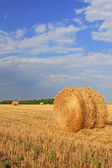 Slanted straw — Stockfoto