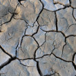 Stock Photo: Cracked mud at Sossusvlei, Namibia