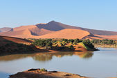 纳米布沙漠中的水淹的 sossusvlei — 图库照片