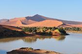 Een overstroomd sossusvlei in de namib woestijn — Stockfoto