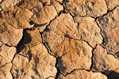Cracked mud at Sossusvlei, Namibia — Stock Photo
