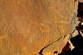 Rock engravings at Twyfelfontein, Namibia — Stock Photo
