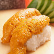 Sea urchin sushi — Stock Photo