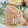 Shredded boiled chicken with  sauce — Stock Photo