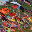 Kites — Stock Photo