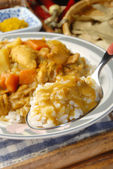 Kyckling curry och ris — Stockfoto