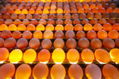 Egg factory — Stock Photo