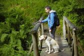 Viagem com cachorro — Fotografia Stock